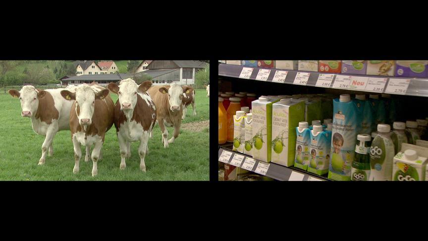 """""""Bewusst gesund"""": Statt der Kuh – Milchersatzprodukte unter der Lupe"""