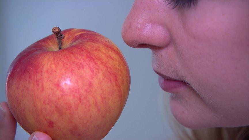"""""""bewusst gesund"""" am 20.10.2018: Traumatisch – was tun bei Geruchsverlust?"""